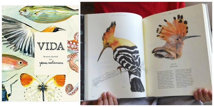 libros infantiles informativos, conocimientos naturaleza, vida bestiario ilustrado joana santamans
