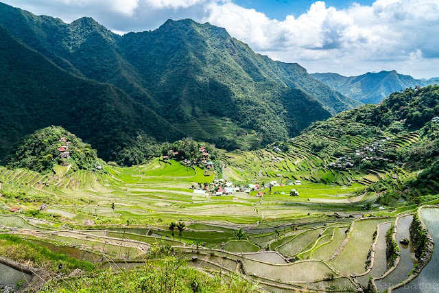 Batad-Philippines-Rizieres