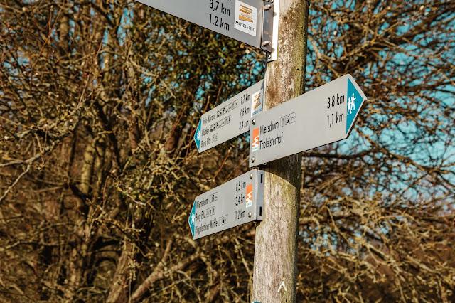 Traumpfad Eltzer-Burgpanorama  Premiumwanderweg  Traumpfade Rhein-Mosel-Eifel-Land  Wanderung Burg-Eltz 10