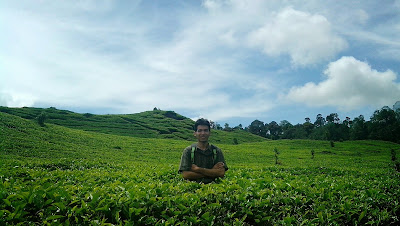 Kebun teh Rancabali Ciwidey