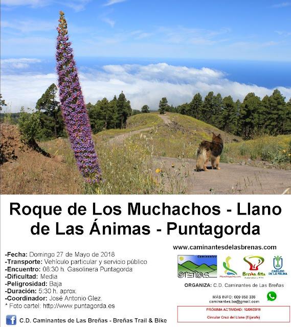 Caminantes de Las Breñas, Domingo 27 de Mayo: Roque de Los Muchachos-Llano de Las Ánimas-Puntagorda