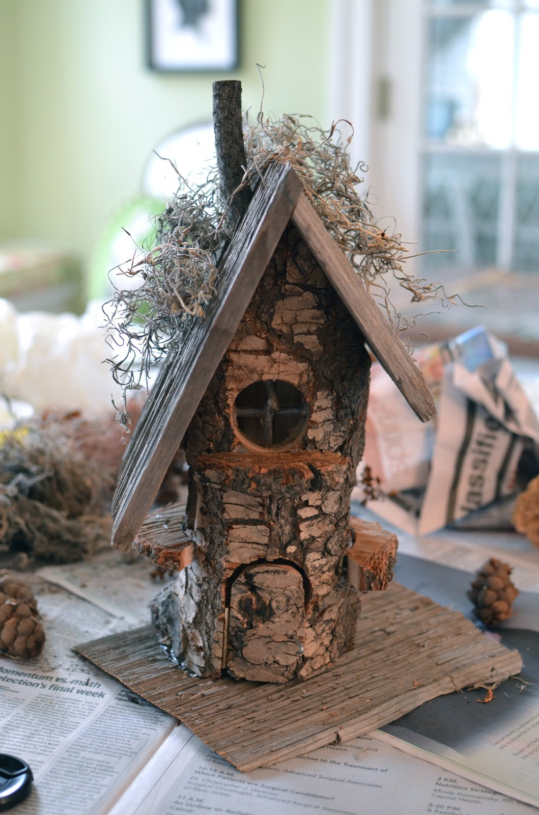 The Princess And The Frog Blog A Gnome House