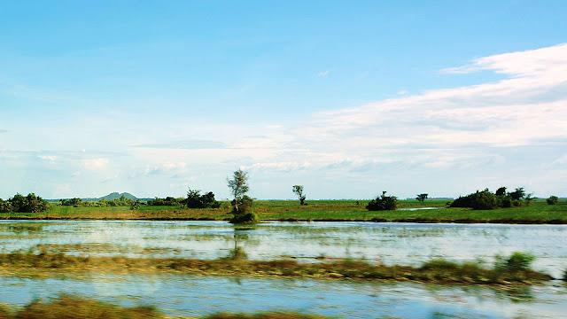 Изображение равнины в воде в Камбодже