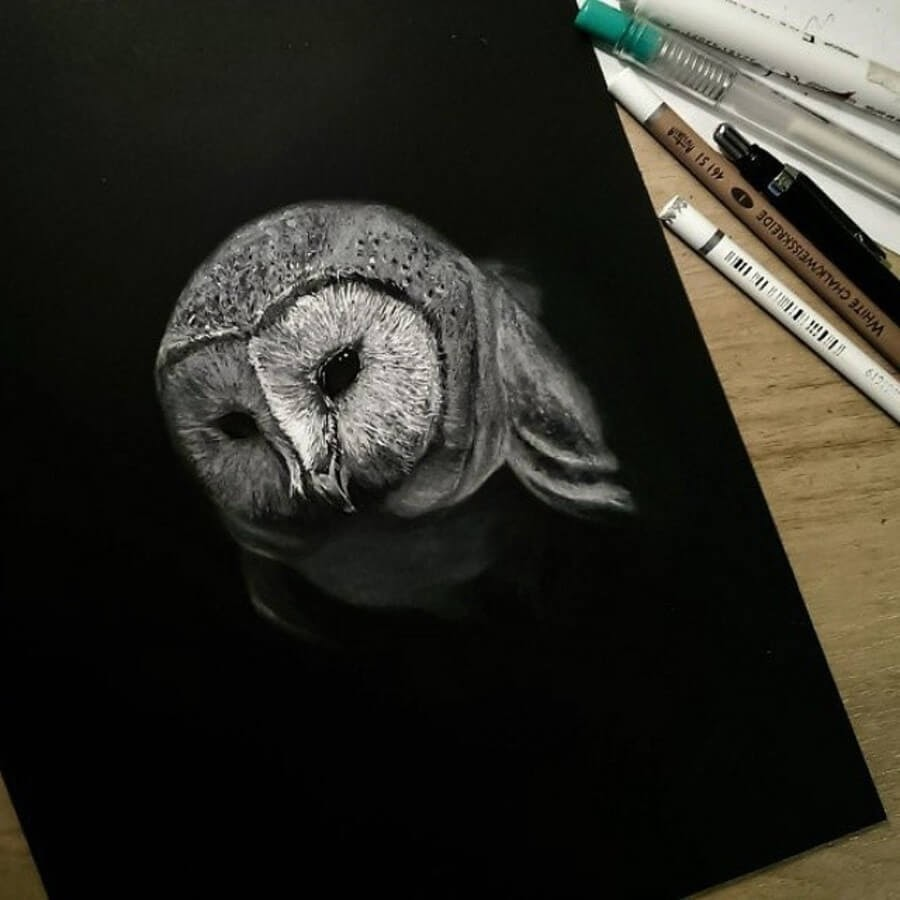 03-Barn-Owl-Rostislaw-Tsarenko-www-designstack-co