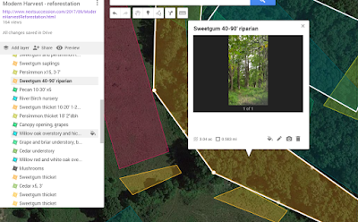 how to map a site google mymaps reforestation areas mark shapes