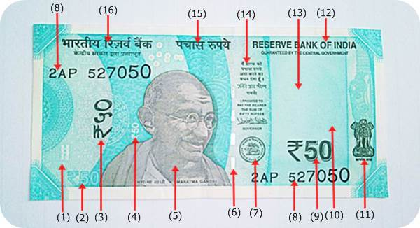 50-Rupee-New-Note-Front-View