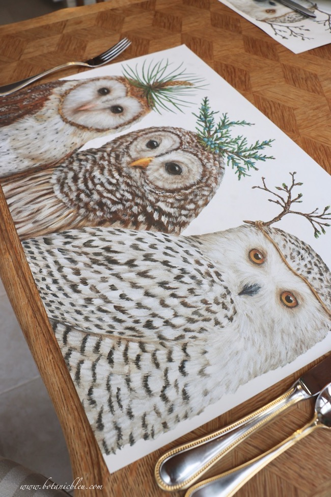 paper place mats with white whimsical owls  for a French table setting