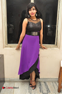 Telugu Actress Rachana Smith Stills at Money is Honey Audio Release  0090.jpg