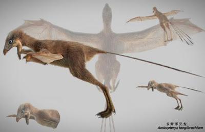 Ανακαλύφθηκε δεινόσαυρος με φτερά νυχτερίδας