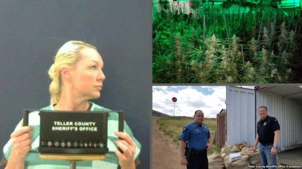 Бізнес на марихуані: українка в США попалася на вирощуванні коноплі