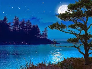 Beauty-of-night-moonlight-picture-poetic-art-image.jpg