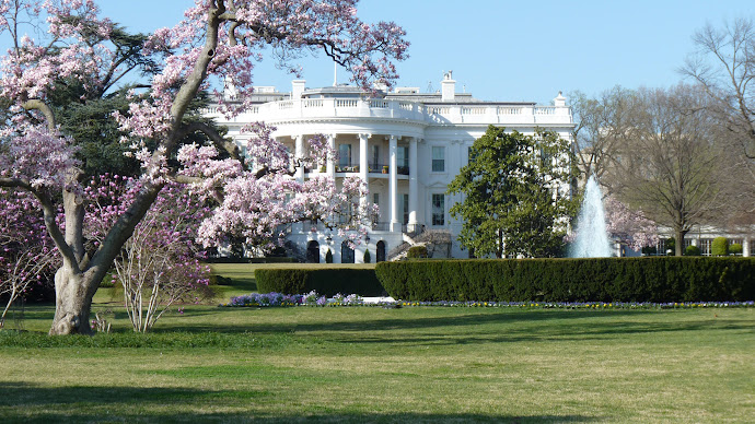 Wallpaper 2: White House