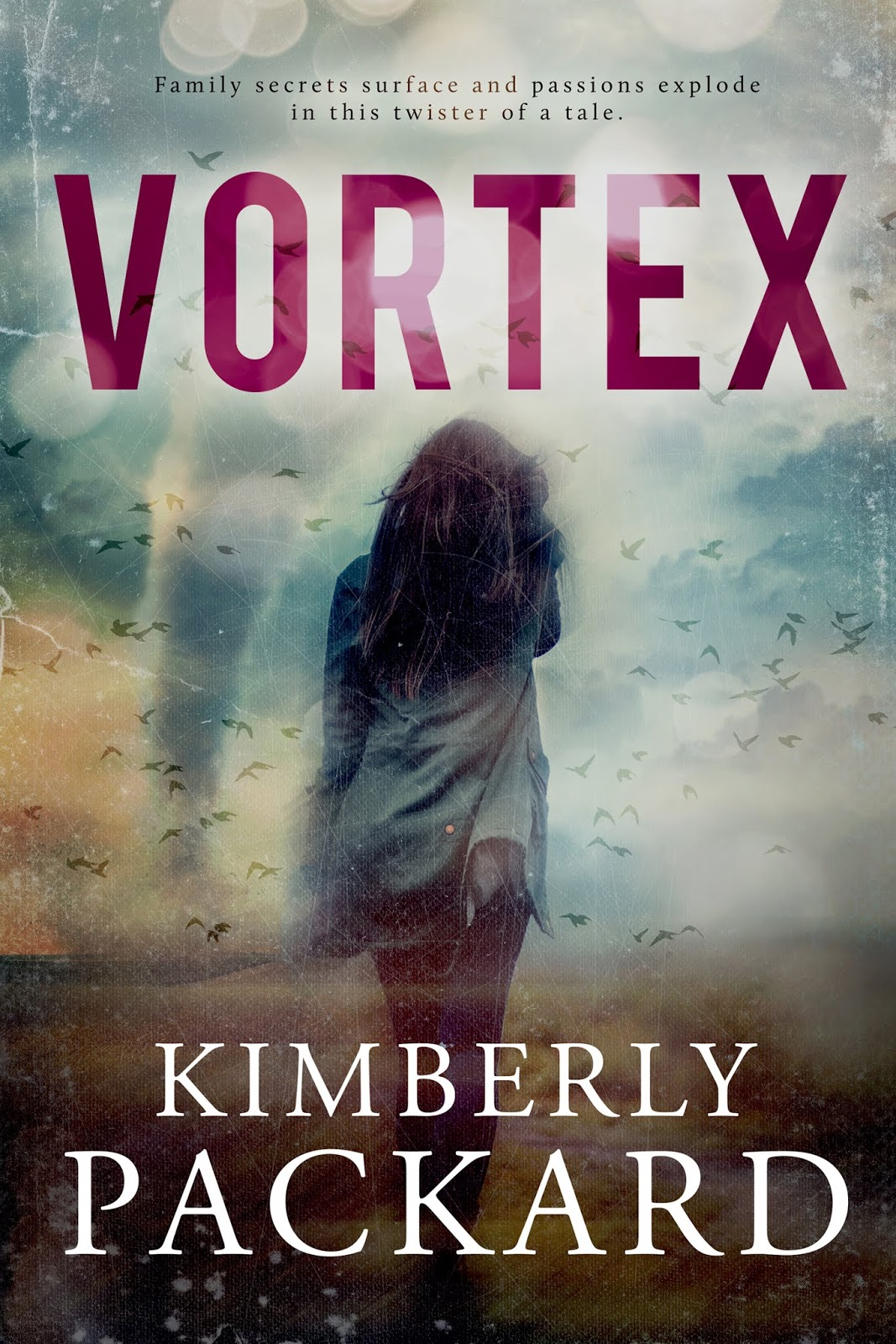 Vortex book cover