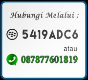 Kontak BBM ID