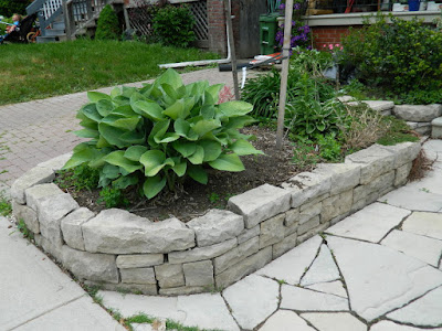 by Paul Jung Gardening Services--a Toronto Gardening Company new front garden perennial bed in Wychwood before