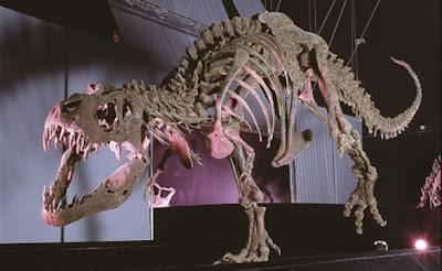 legendark sauropodo galve hostal alcorisa