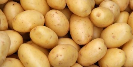 kentang bikin gemuk