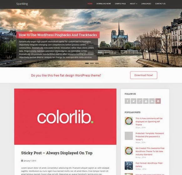 Sparkling- Free Flat Blog WordPress Theme