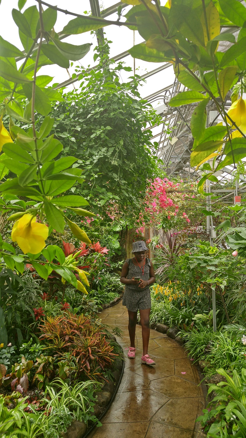 Alex in Wonderland: Adventuring Through the Allan Gardens | Ms. Tiger Lilly