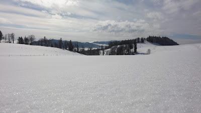 Glitzernder Schnee