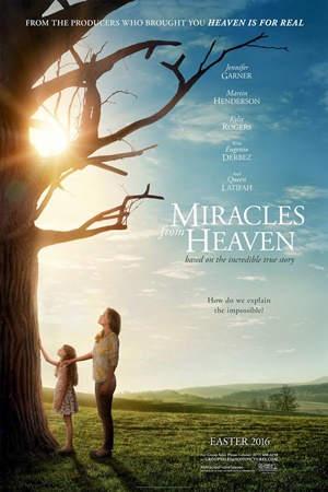 Milagros del cielo (2016) DVDRip Latino