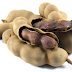 Amazing Health Benefits of Tamarind Fruit You Shouldn't Ignore!