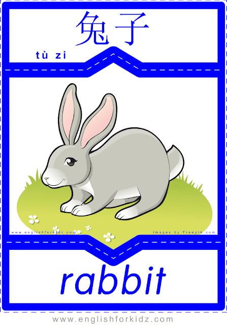 Rabbit - printable English-Chinese flashcards - pets