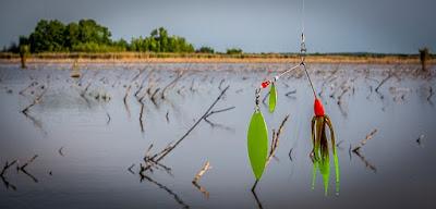 Spinnerbaits, uno de los cebos a tulizar para la pesca del Black Bass en Otoño