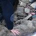 Hallaron un lobo en el río a punto de morir congelado. Cuando supieron lo que le había pasado, no pudieron evitar llorar