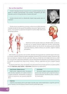 6. Sınıf Fen Bilimleri Ders Kitabı Cevapları Sevgi Yayınları Sayfa 42