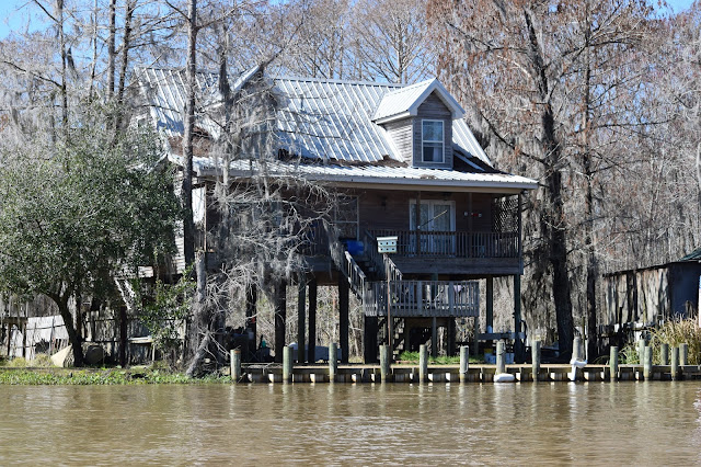 Cajun Encounters, Honey Island Swamp, New Orleans, Louisiana