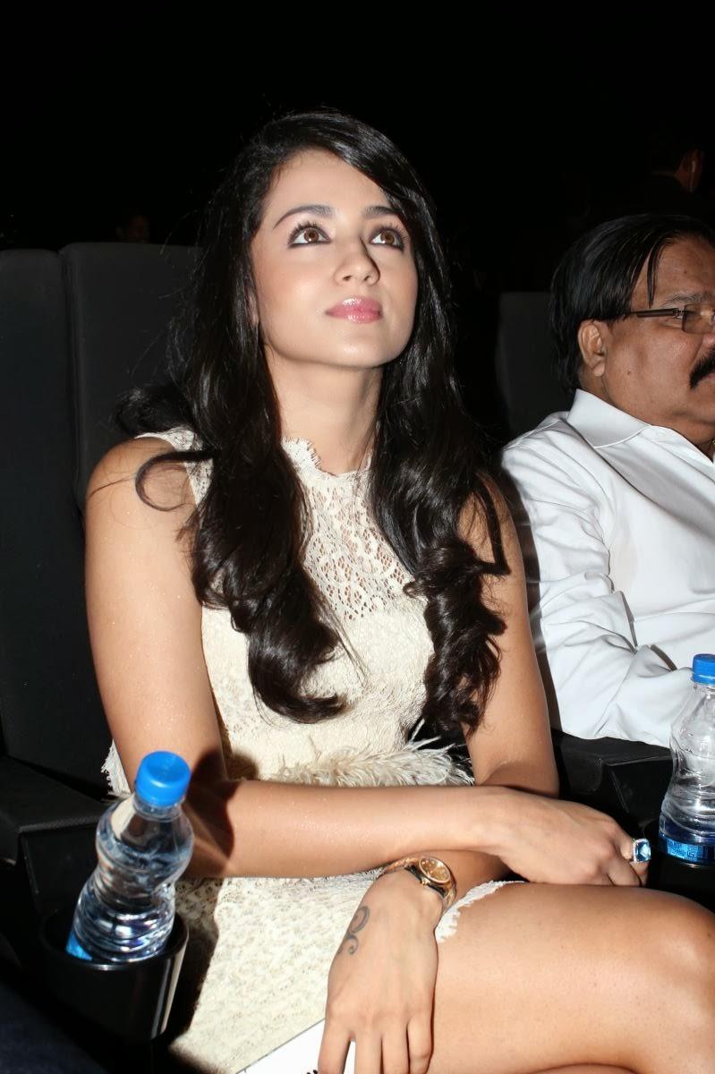gorgeous Trisha hot photos at movie audio launch function
