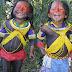 Brasil quer mesmo acabar com os índios