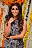 Actress Mehreen Kaur Latest 2017 Po Stills7 ~  Exclusive Celebrities Galleries.jpg