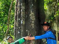 Mengenal Organisme Endemik di Kawasan Pengamatan Satwa Karaenta
