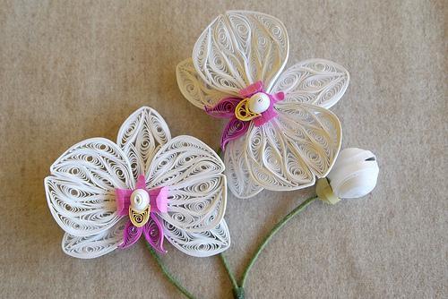 Paper quilling flower designs creative art craft work paper quilling flower designs mightylinksfo