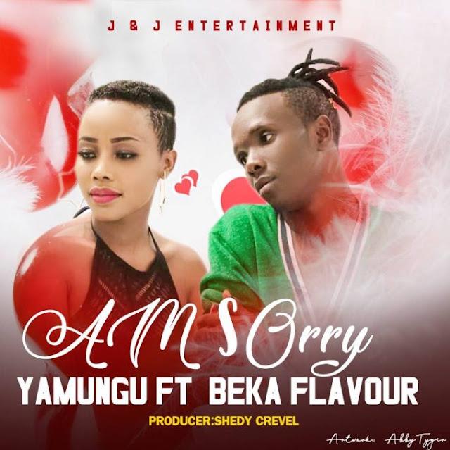 Yamungu Ft Beka Flavour - I'm Sorry