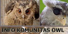 Informasi Komunitas Burung Hantu