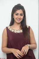 Nikki Galrani in a Brown Shining Sleeveless Gown at Nakshatram music launch ~  Exclusive 052.JPG