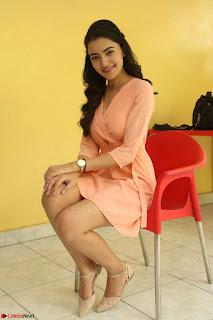 Rukshar Mir in a Peachy Deep Neck Short Dress 022.JPG