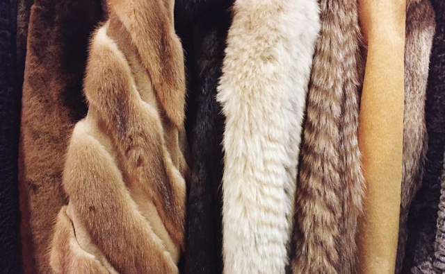 San Francisco Becomes the Largest U.S. City to Ban Fur Sales