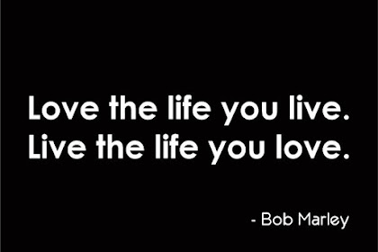 100+ EPIC Best Love The Life You Live Quotes
