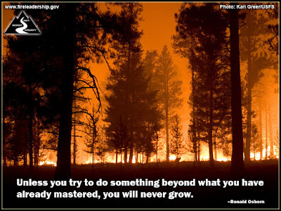 Unless you try to do something beyond what you have already mastered, you will never grow. –Ronald Osborn