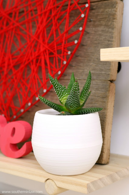 Valentine's Day Home Decor Styling – Succulent in Self Draining Pot - inspiration, easy valentine's decoration ideas, red pink home décor theme