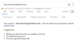 Search Engine Land (searchengineland.com) Is Not Currently Indexed In Google (Deindex)