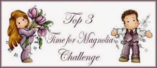 Time for a Magnolia Challenge-May 2014