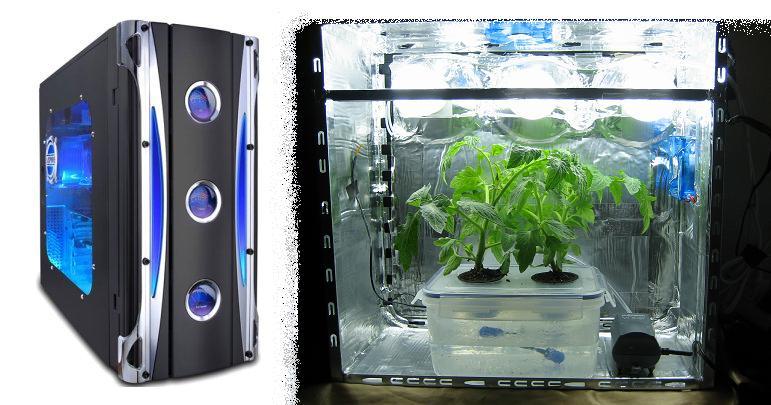 Hydroponics Growbox Flora Hydroponics How To Hydroponics