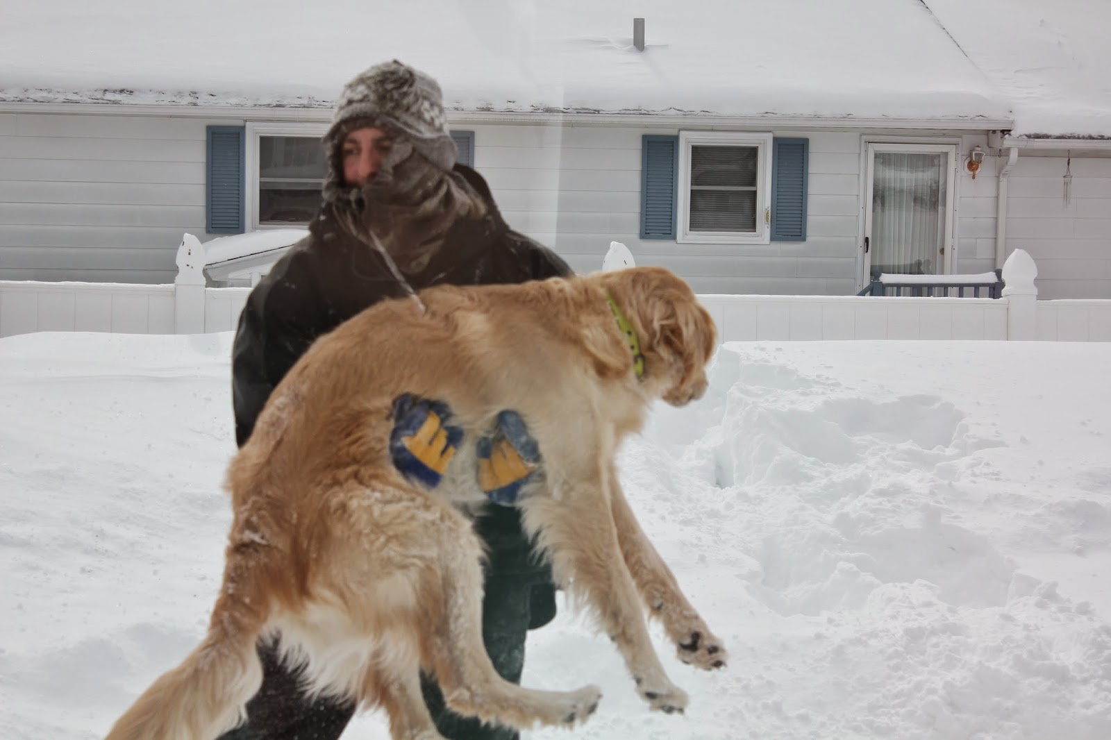 owner carrying do in snow