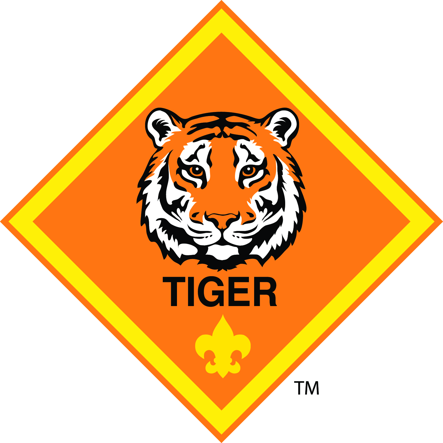 Cub Scout Pack Keller Tx Tiger Adventure Day Is