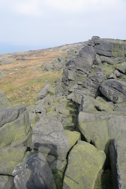 Another view of gritstone tors and shattered boulders.